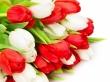 Дорогие и любимые наши женщины! Наш коллектив от всей души поздравляет Вас с прекрасным праздником 8 марта